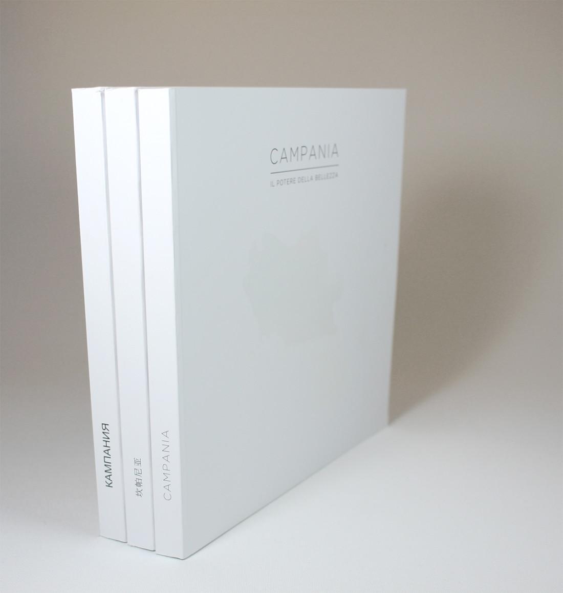 catalogo, campania,Book, libro, layout, grafica, comunicazione, manuarino